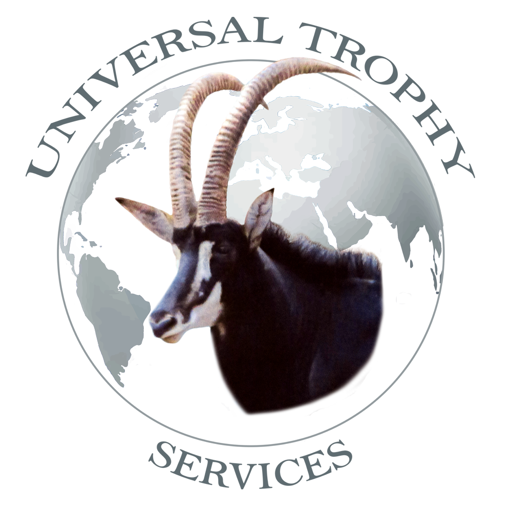 Universal Trophy Services – Professional trophy processing and export service to the international hunting market.